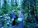 Mustilan Arboretum