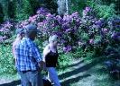 Mustilan Arboretumin kukkaloistoa ja opastusta